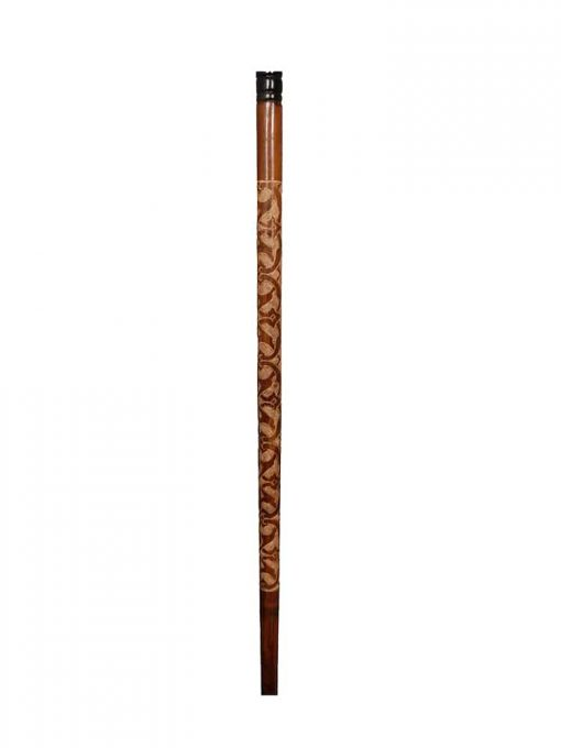 Eagle Head Walking Stick cool2 510x680 - Eagle Head Walking Stick