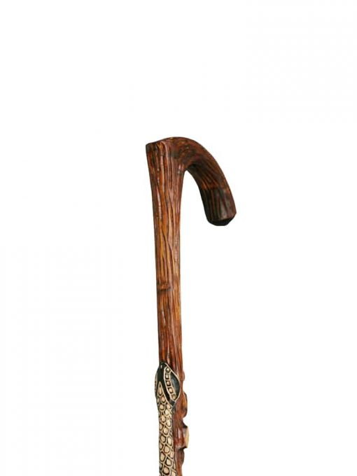one-walking-stick