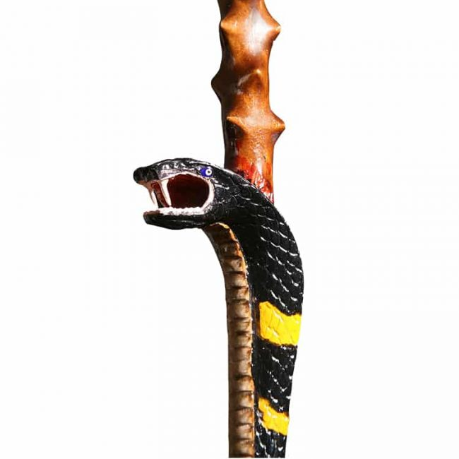 Mens Specialty Free Form Style Walking Stick