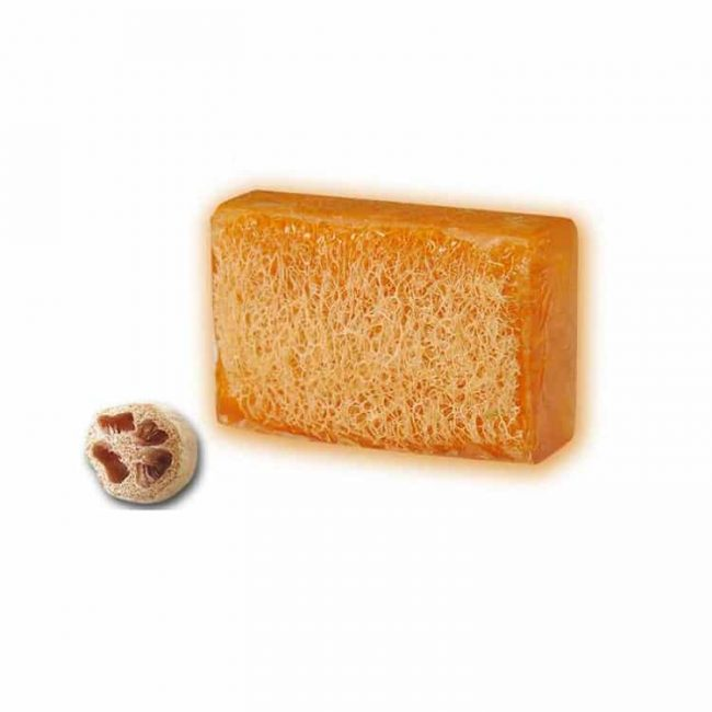 natural-honey-pumpkin-soap
