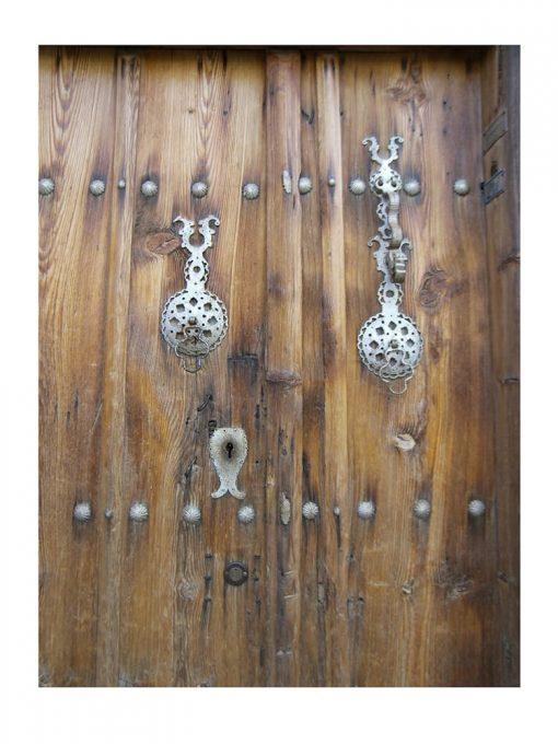 leaves-door-knocker