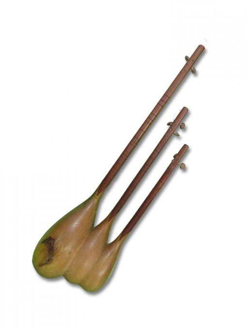 Triplet Instrument 2 510x680 - Triplet Instrument