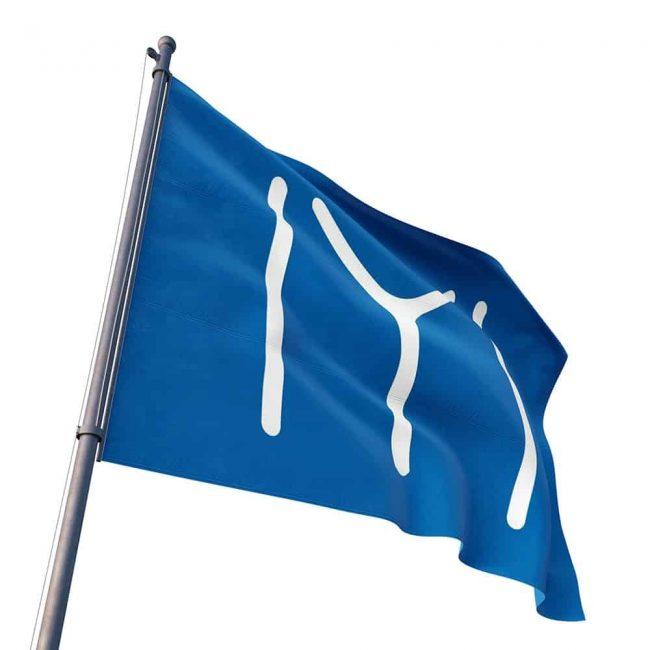 iyi flag
